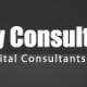 binary consulting